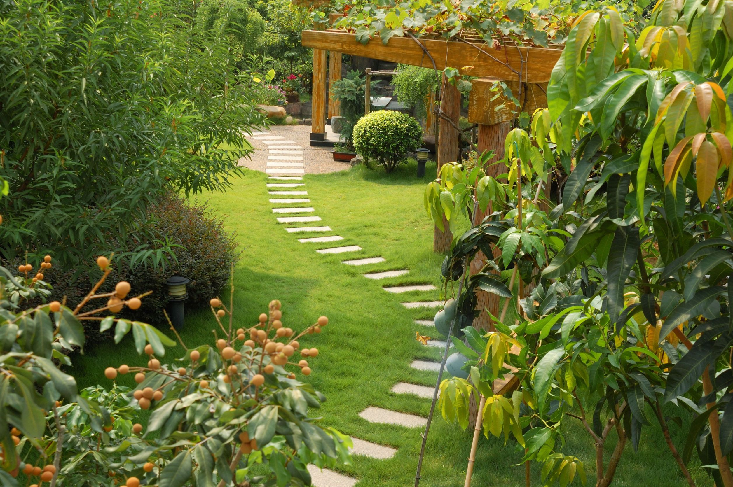 A simple stepping stone path an easy diy project the for Paving designs for small garden path