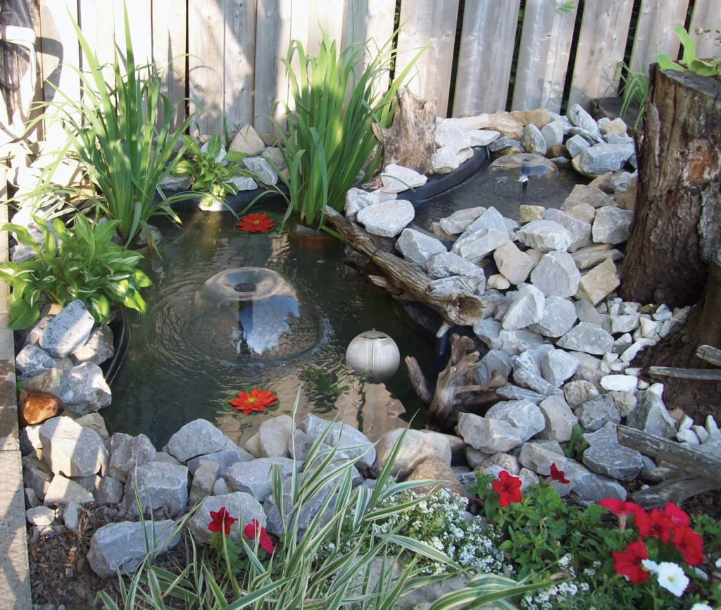 Beau How To Create A Serenity Garden On Any Budget
