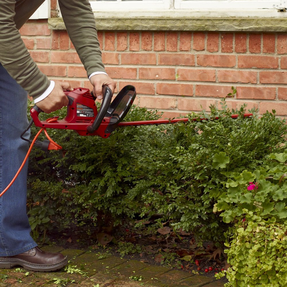5 Environmentally Friendly Ways To Spruce Up Your Garden | The ...