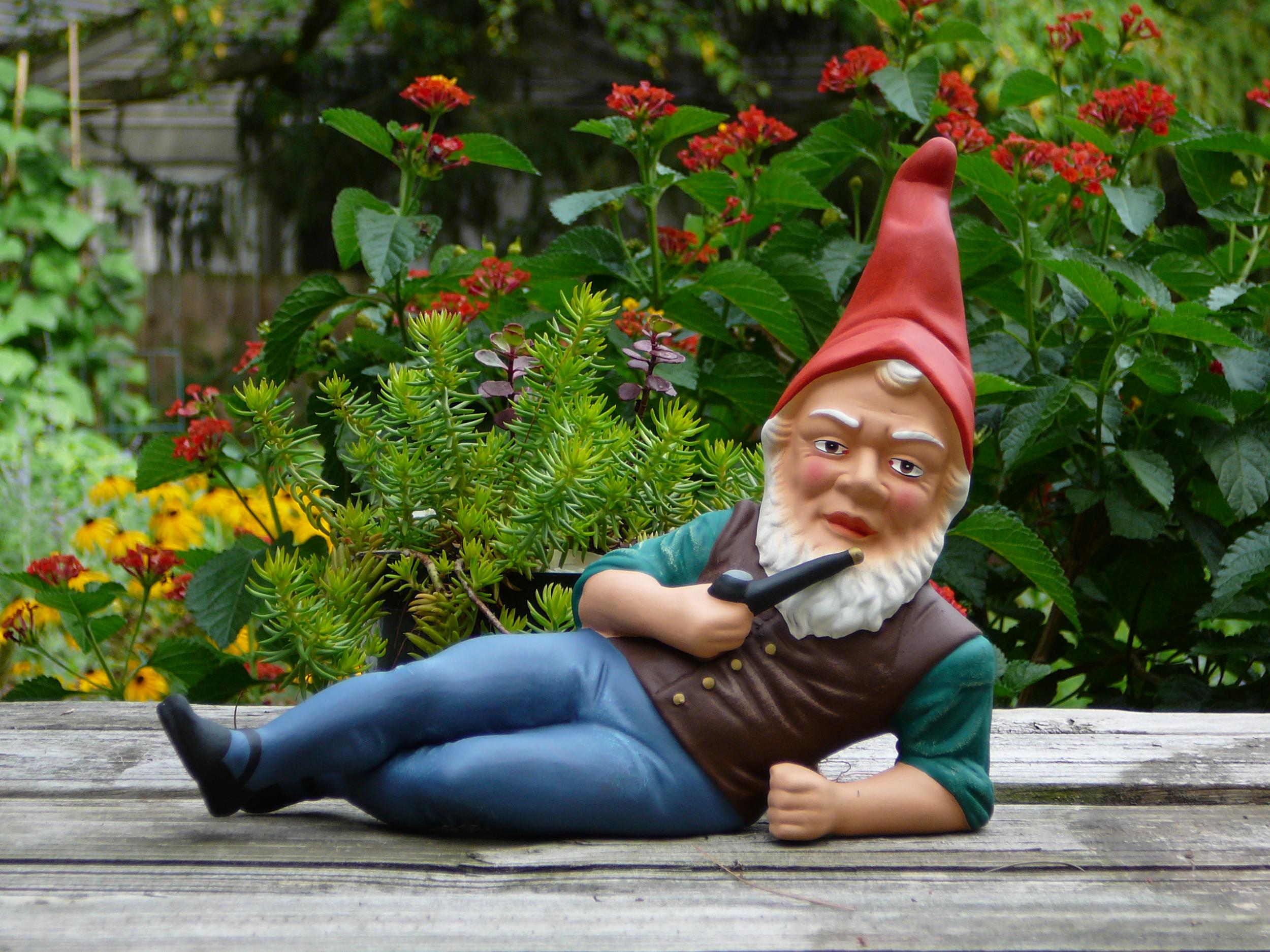 how to highlight your backyard garden the garden and patio