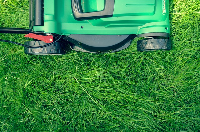 Easy Lawn Care? Experts Say It's Possible With These Tips!