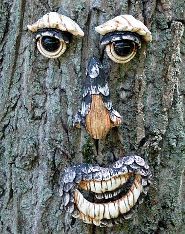 Many People Actually Like To Install These So That They Appear To Be  Looking At And Reacting To Their Naughty Garden Gnomes. Tree Faces
