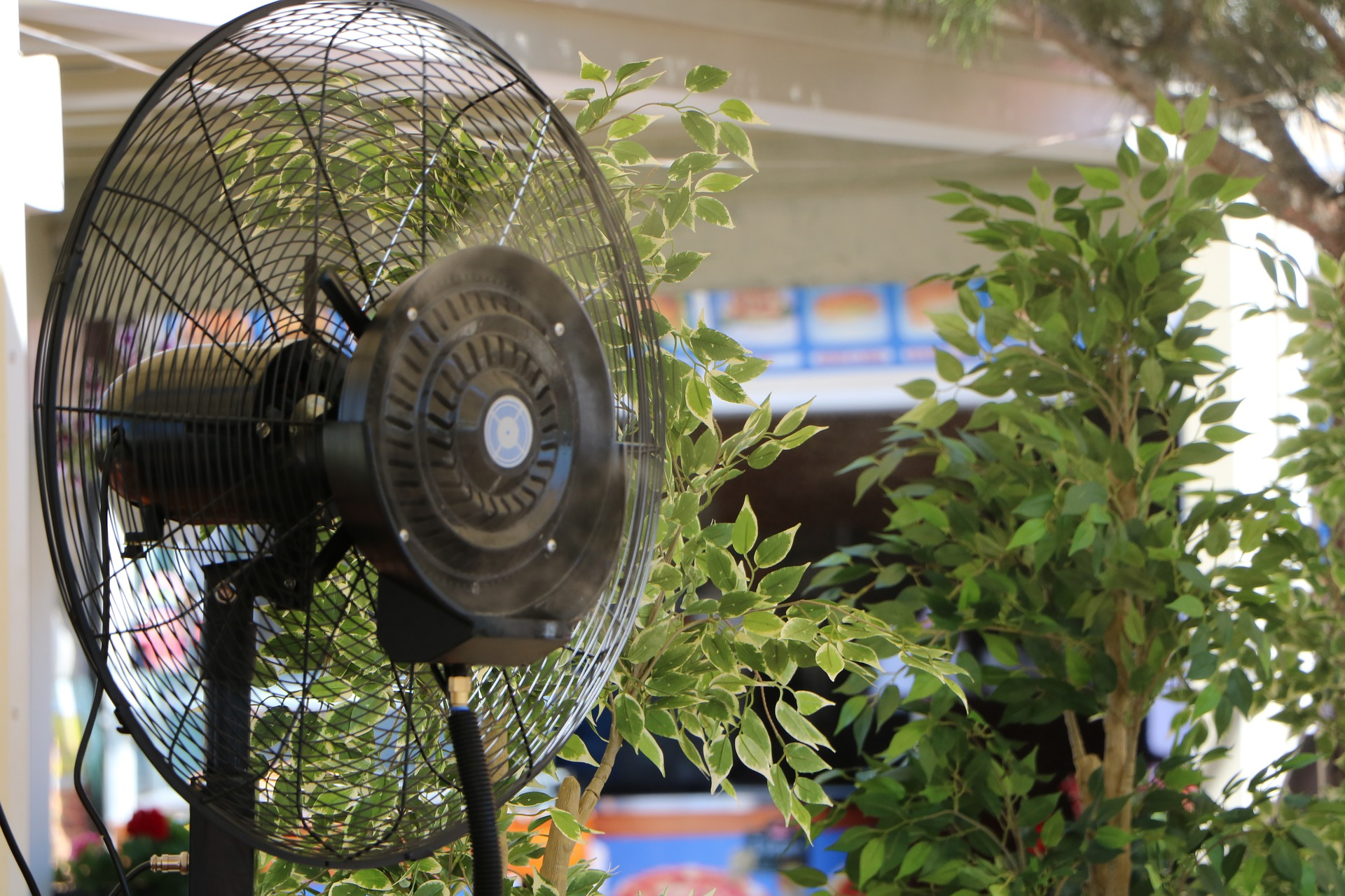 how to keep mosquitoes away from your outdoor living space the