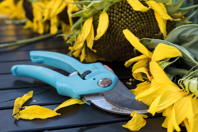 Common Gardening Injuries And How to Avoid Them