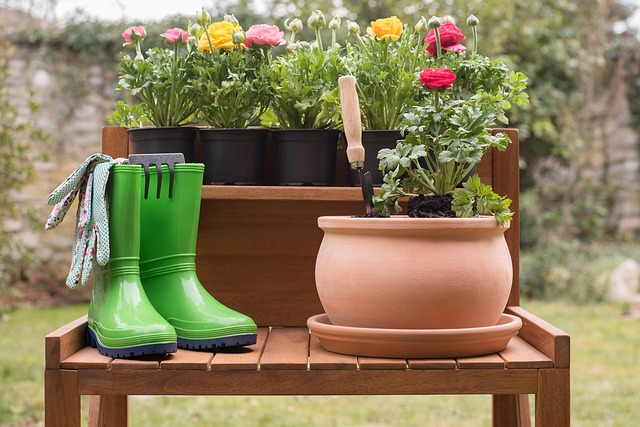 5 Eco-Unfriendly Things You Do That Kill Your Garden